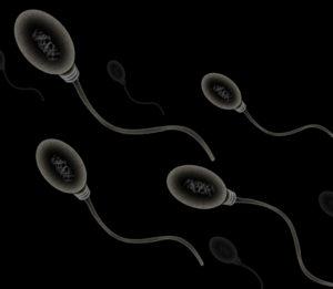 silné spermie