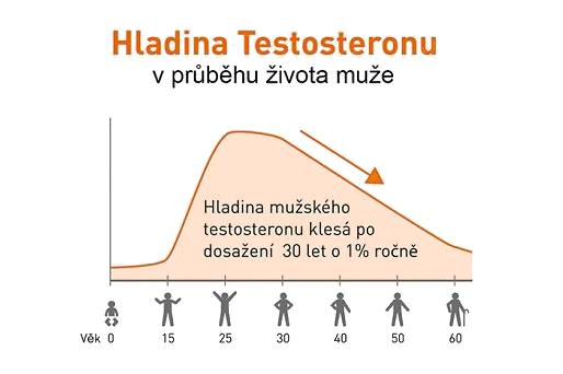 hladina testosterónu vzhľadom k veku